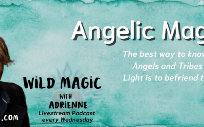 Angelic Magic – Wild Magic with Adrienne Podcast Episode 2